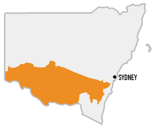 country_NSW_south map