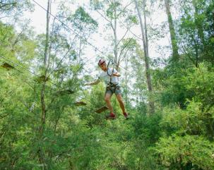 TreeTop Adventures, Central Coast